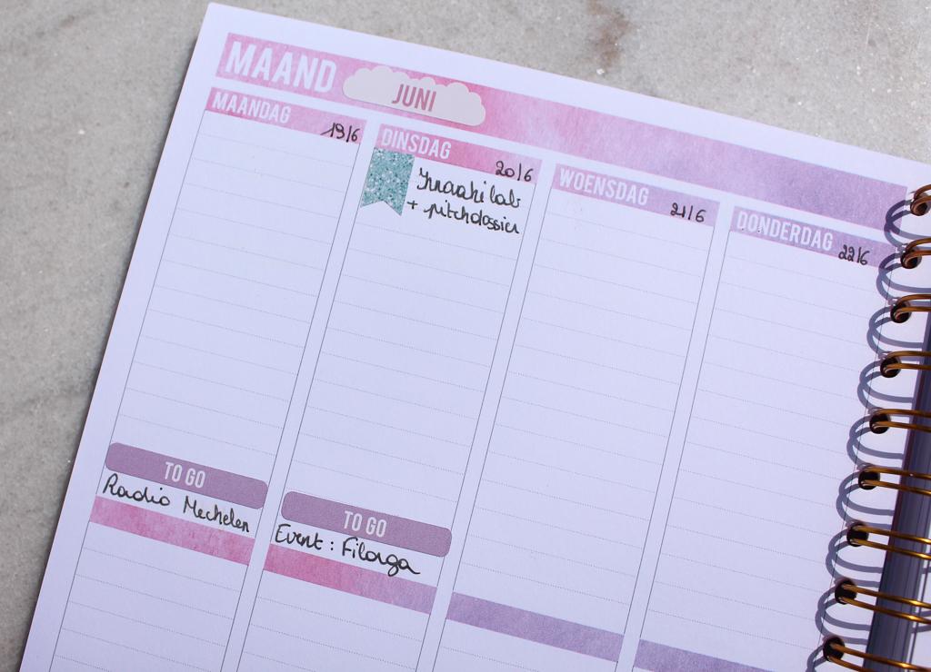 Hoe ik de Mascha planner gebruik