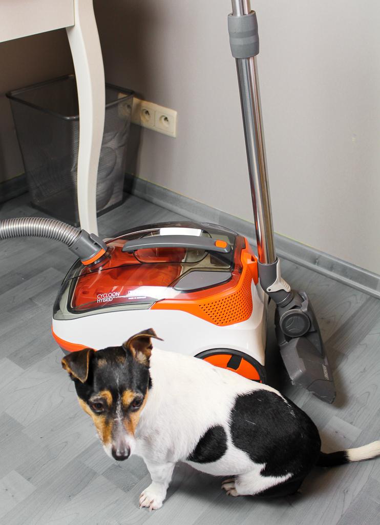 Mijn huisdieren en Thomas cycloonstofzuiger